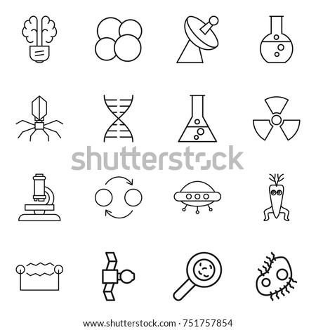thin line icon set   bulb brain