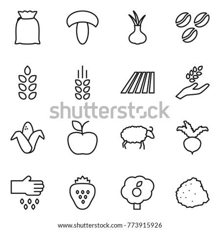 Thin line icon set : flour, mushroom, onion, coffee seeds, spikelets, field, harvest, corn, apple, sheep, beet, sow, strawberry, garden, pile of garbage