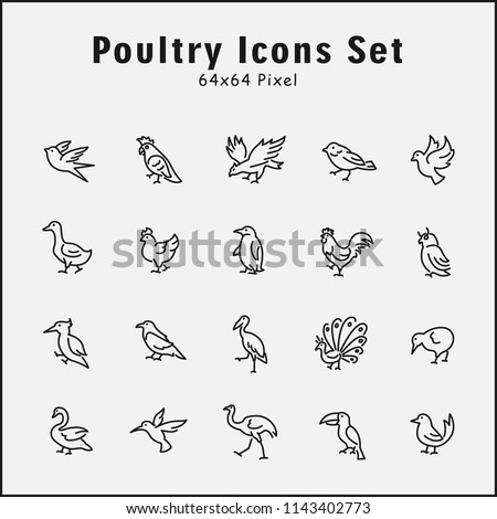 Thin line icons set of animals, poultry, bird, wild, zoo. Editable vector stroke 64x64 Pixel.