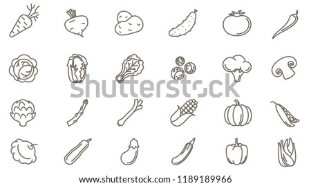 Thin line vegetables vector icon set