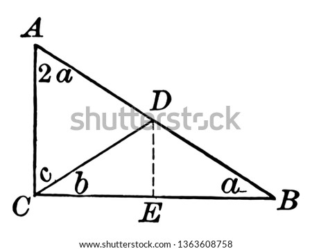 This is an image of the right triangle with a double angle other. Another triangle is formed in the triangle due to line, vintage line drawing or engraving illustration.