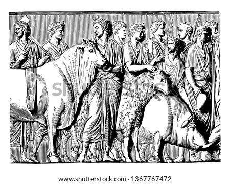 This is the view of the Suovetaurilia. The suovetaurilia was a sacred Roman sacrifice of a pig, a ram and a bull for Mars, the god of war to purify the earth, vintage line drawing or engraving