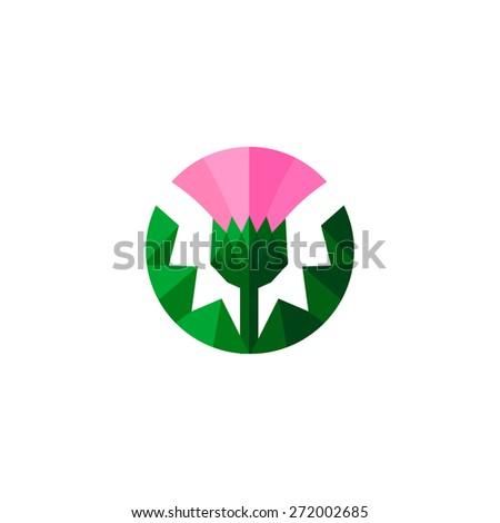thistle   floral emblem of