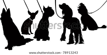Thoroughbred dogs animals an exhibition - stock vector