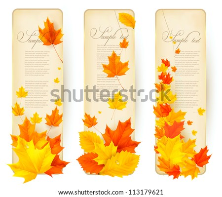 Three autumn banners with colorful leaves in golden frames. Vector.