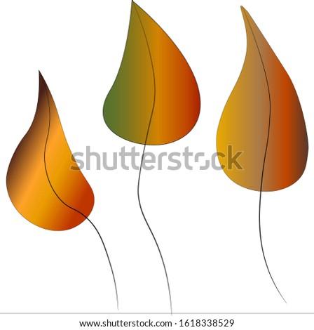 three autumn colored leaves