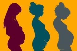 three beautiful pregnant woman silhouettes