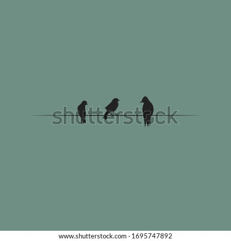 three birds on a wire vector