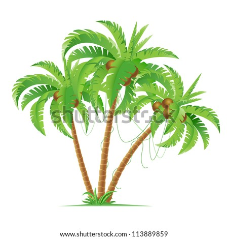 three cartoon coconut palms