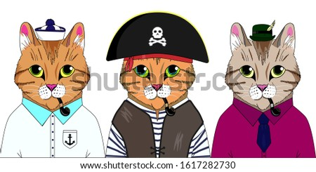 three cats in different