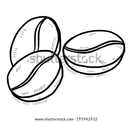 Coffee bean line drawing for How to draw a coffee bean
