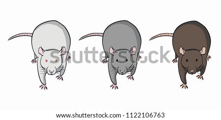 Three colorful rats on white background. Set of different rats. #1122106763