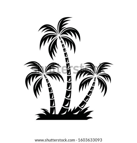 three curved coconut trees in a