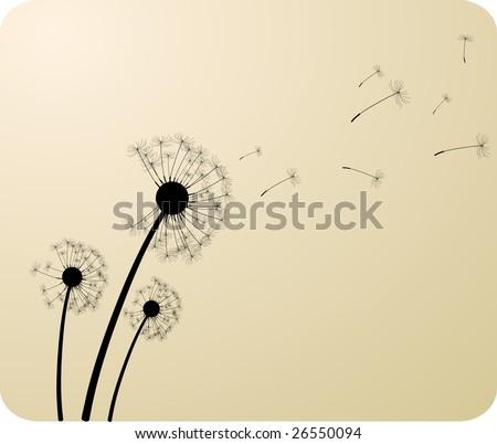 Three dandelion silhouettes. Vector illustration.