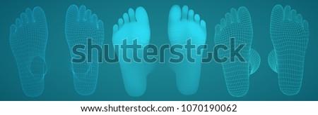 three dimensional female feet