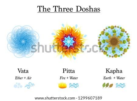 three doshas  vata  pitta