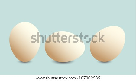 Three eggs vector