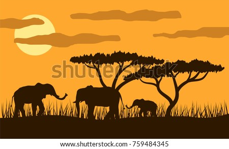 three elephants in african