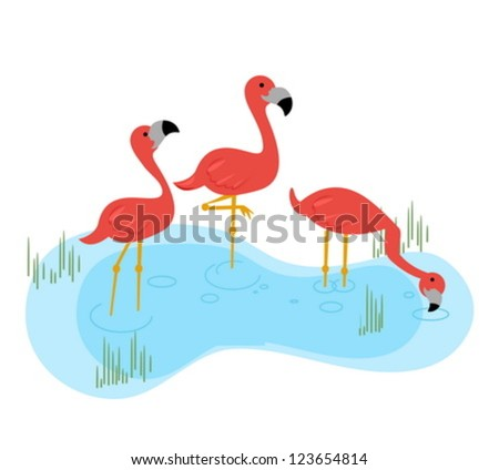 three flamingos standing in the