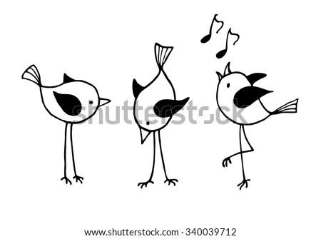 three funny cartoon birds