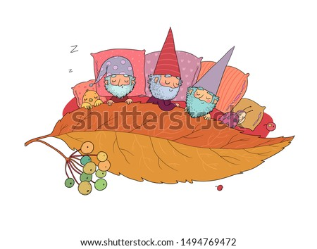 three gnomes sleep under the