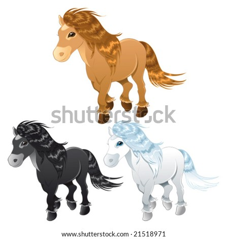 three horses or pony funny