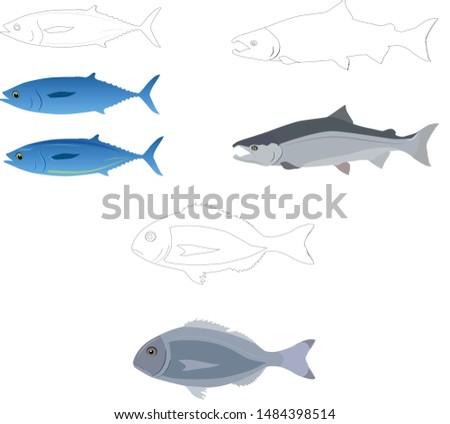 three kinds of fish vector