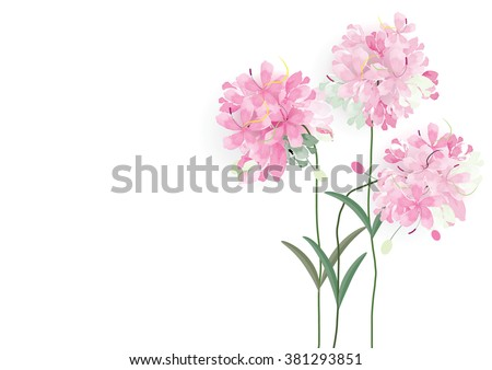 three pink flowers circle