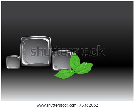 Three plastic cube lying on a black and white background with green leaves and drops of water