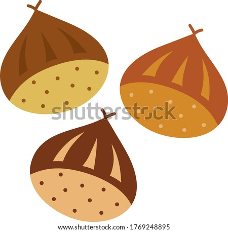 three pretty chestnuts of autumn