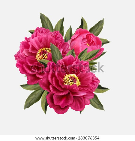 three red peony flowers