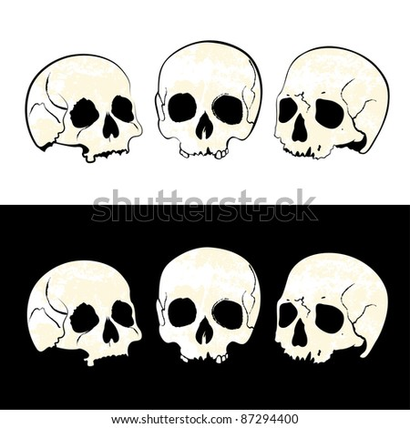 three skulls hand drawn - stock vector