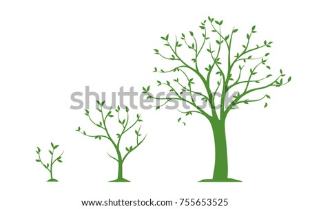 Three stages of growing tree - flat vector illustration