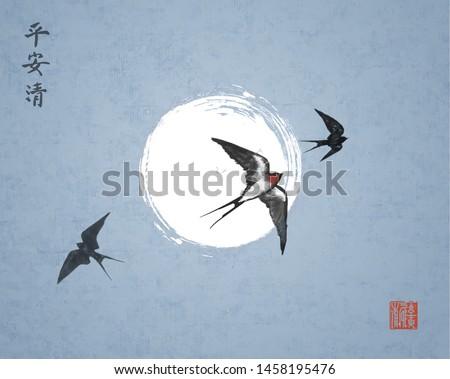 three swallow birds on night