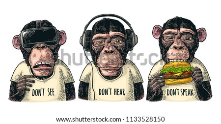 three wise monkeys in