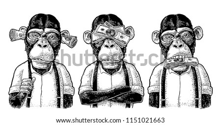 Three wise monkeys with money on ears, eyes, mouth. Not see, not hear, not speak. Vintage black engraving illustration for poster, web, t-shirt, tattoo. Isolated on white background