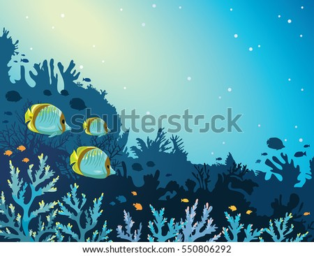 three yellow butterfly fish and