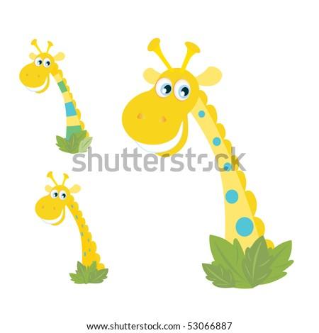 three yellow giraffe heads