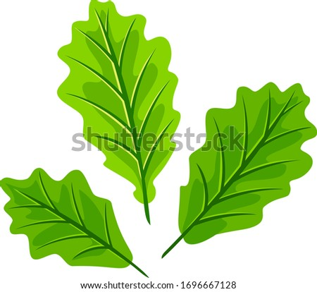 three young light green oak