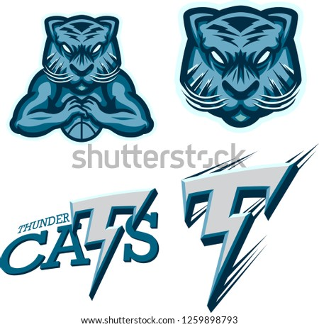 thunder cat basketball team
