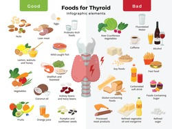 Thyroid nutrition infographic elements. foods for thyroid health, good and bad meals icon set in flat design isolated on white. Thyroid gland on the larynx and trachea vector flat illustration.