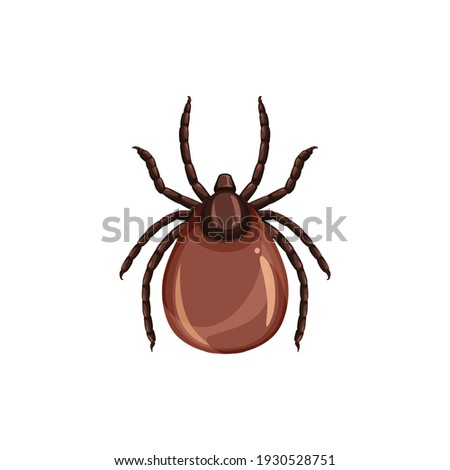 Tick insect icon, pest control, parasites extermination and disinsection service, isolated vector. Tick or mite insect, health sanitary and encephalitis parasite pest control symbol Stock photo ©