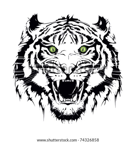 tiger, - stock vector