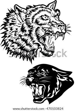 Tiger and panther, hand drawn vintage illustration