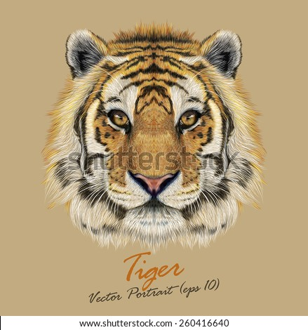 tiger animal face vector cute