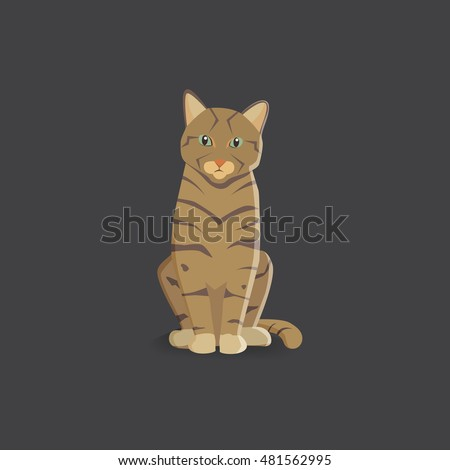 tiger cat vector illustration
