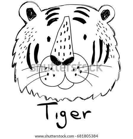tiger hand drawn illustration