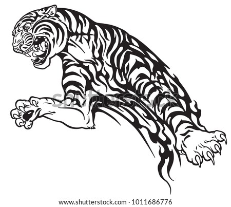 35dd248bb tiger in the jump. Aggressive big cat . Black and white tribal tattoo style  vector