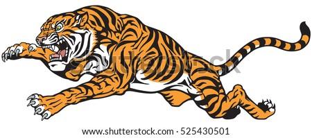 tiger jump angry big cat