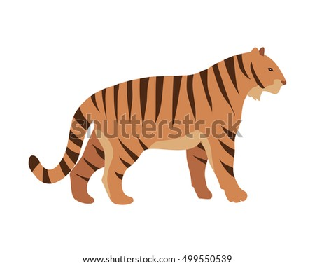 tiger panthera tigris cartoon